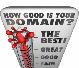 SEO Denver - domain info